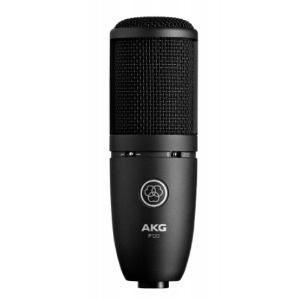 AKG P120 image